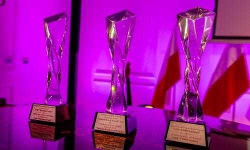 nagrody_biznesowe_2018-2101-12f8e48967bdaa19a539b70253dd0103.jpg